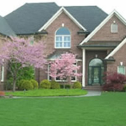Lawn & Landscaping Maintenance